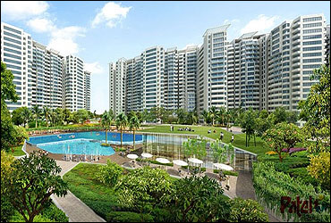 copy-noida-development.jpg